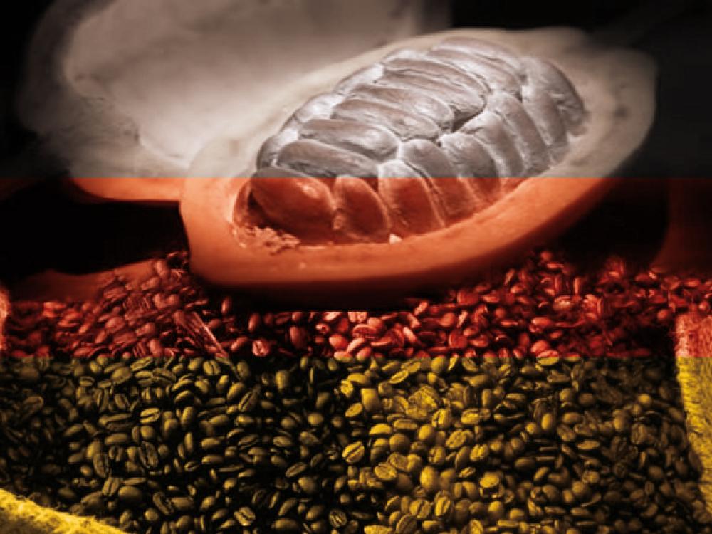 Santo Domingo logra acuerdo para exportar cacao a Alemania